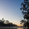 Early morning at Lake Forbes