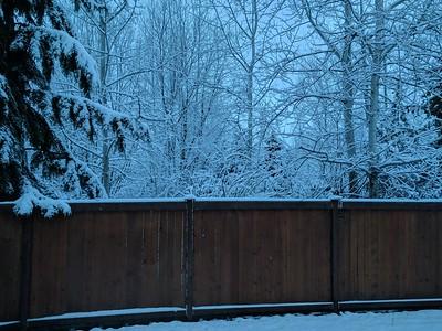 2017-02-06 Snow
