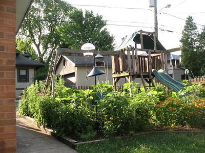 2017-06-18 Cornelia St Prairie
