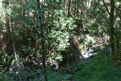 Another quick break on the way down hill, overlooking one of the many tributaries to Granite Creek.