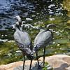 Blue Heron Cranes...special