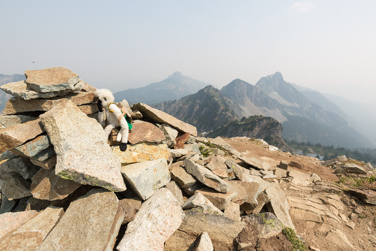 Rally Monkey plots the final course to the true, true summit of Alta on top of the cairn.