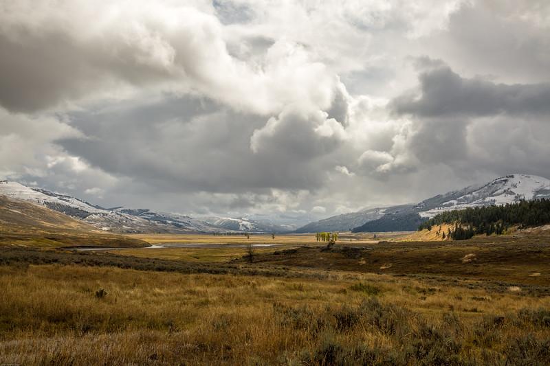 Lamar Valley, Yellowstone National Park.