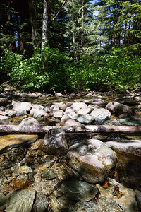 Drank a little over 5 L of water in 90+ degree temperatures. Thankful for this stream crossing where I could refill on the way back down.