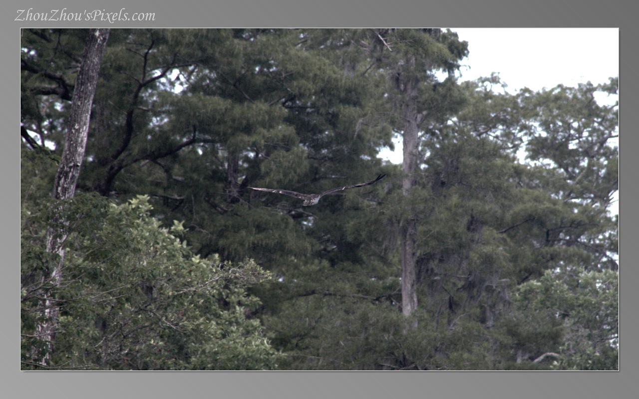 2017_07_22-2Slideshow-11
