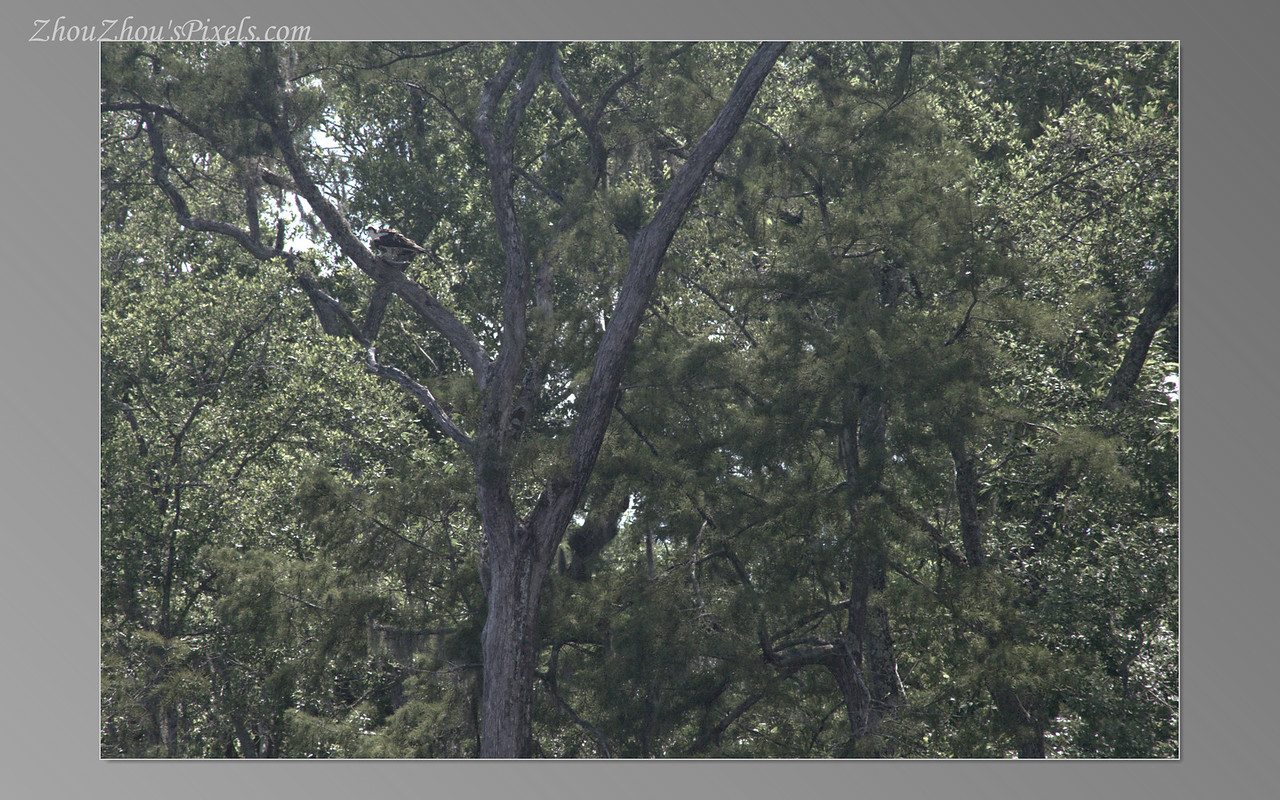 2017_07_22-2Slideshow-42