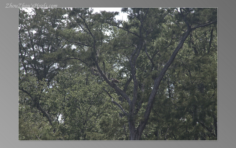 2017_07_22-2Slideshow-39