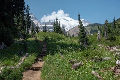 Mt. Rainier pops up everywhere.