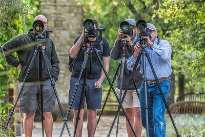 Owl Photographers...April 11, 2019