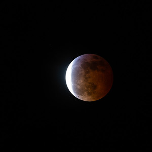 Super Blood Wolf Moon Select 1-20-19-8