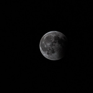 Super Blood Wolf Moon Select 1-20-19-11