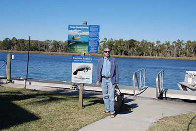 We went to Crystal River, FL on the Gulf coast to see more manatees and to swim with them.