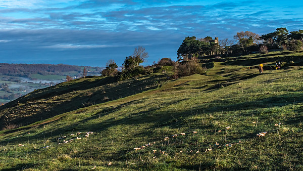 Fairy Rings and Rodborough Fort