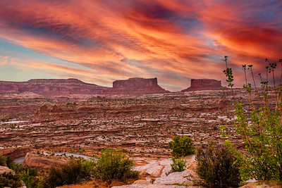 Canyonlands National Park - ART-2663 copy