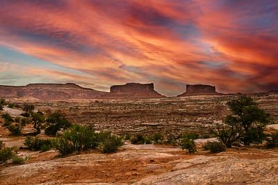 Canyonlands National Park - ART-2660