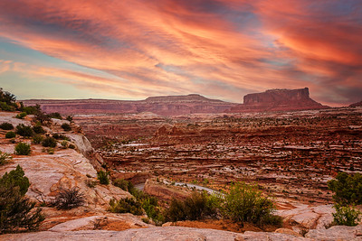 Canyonlands National Park - ART-2666