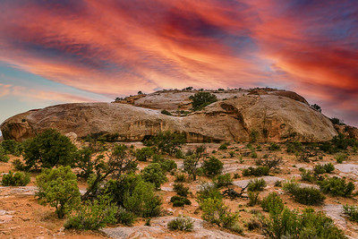 Canyonlands National Park - ART-2662