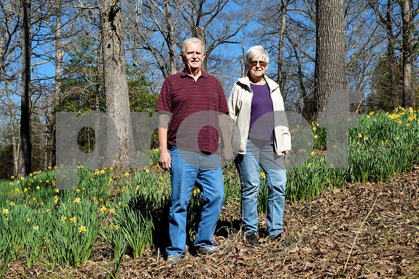 James Nixon and Ellen Wheeler pose for a photo with daffodils at Mrs. Lee's Daffodil Garden in Gladewater, Texas, on Tuesday, March 6, 2018. The original daffodils were brought in from Holland years ago and have continued to grow and thrive on the land. (Chelsea Purgahn/Tyler Morning Telegraph)
