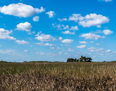 A Florida Prairie