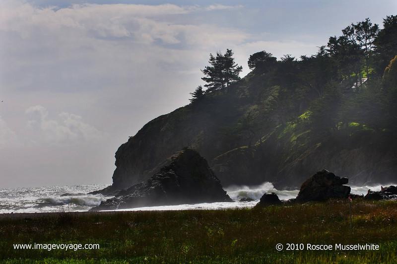 Muir-Beach-copy