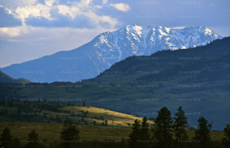 Far Splendours<br /> The mountains of the Okanagan, catchers of light and snow, in early summer.