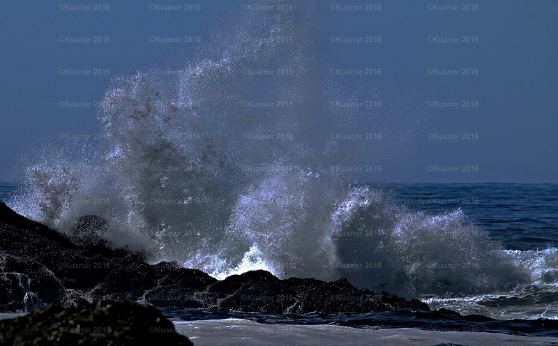 Starred Surf<br /> The powerful, crushing, rumbling roar of the ocean is followed, always, by a guilty request for silence: shhhhhhh.