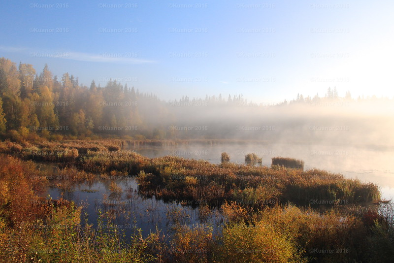 Cold Calm Kissed<br /> A colour-filled autumn dawn, before the land and its lakes have shaken off the cold morning mists that hugged all of northern BC on this day in early fall.