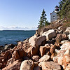Bass Harbor Light in Acadia National Park