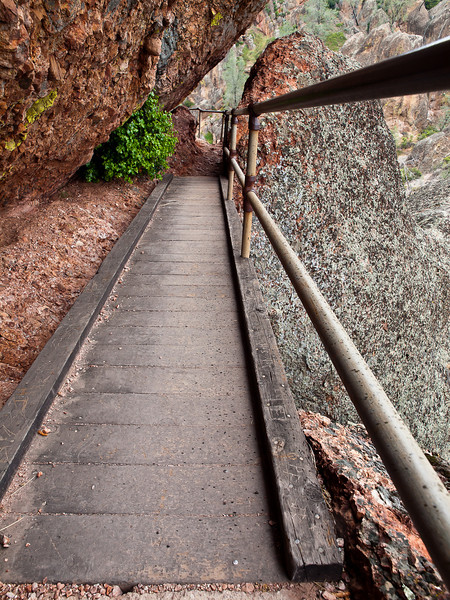 Precarious bridge on the Tunnel trail at Pinnacles National Monument.  You have to crouch down and sort of duck walk across.  Looking down made me dizzy so I just kept my eyes up and front!