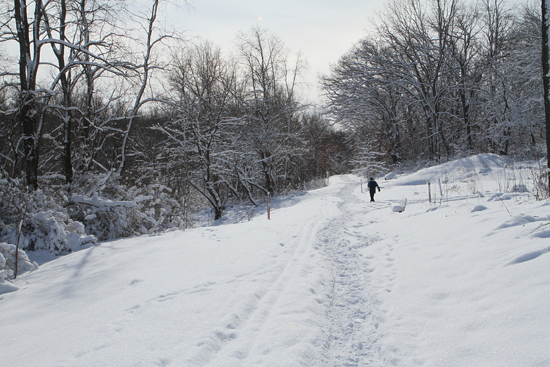 There's nothing like a walk in the winter to clear your head from the hustle and bustle of the world.