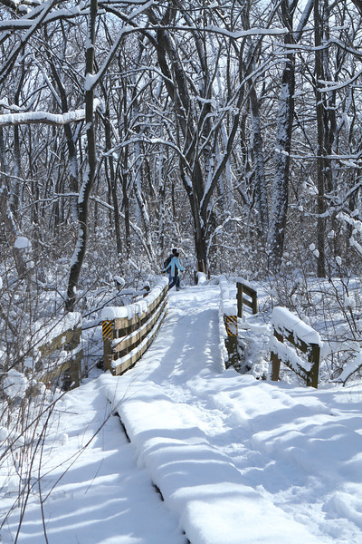 Miles of paths for walking, jogging, cross country skiing, snow shoeing, and in warmer weather - cycling.
