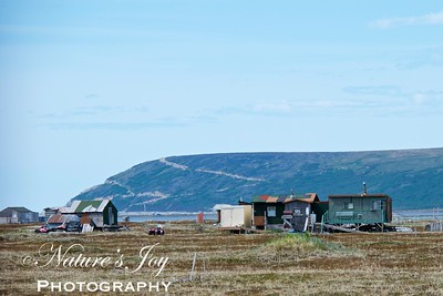 Inuit Home