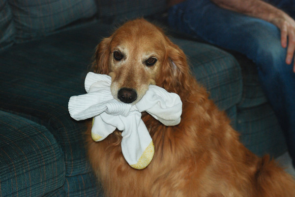 She loves socks
