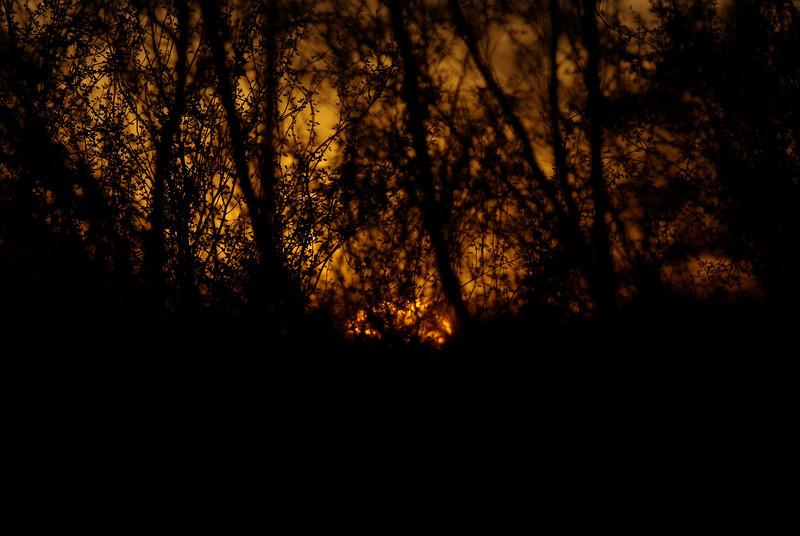 Before sunrise... Nov 23 2008... Borrego Springs