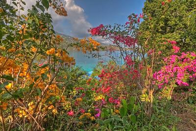 Caribbean Landscape - Sand Dollar Estate, St. Thomas, U.S. Virgin Islands - HDR Image