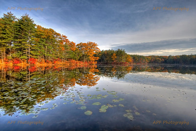 HDR Landscape - Rutland State Park, Rutland, MA