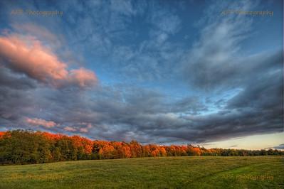 HDR Landscape - Adams Pond Farm