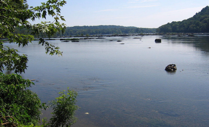 Looking down the Potomac