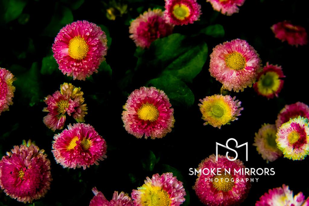 Flowertilla