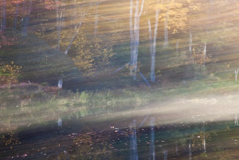 Mirror Lake Reflection<br /> (IMG_2058)