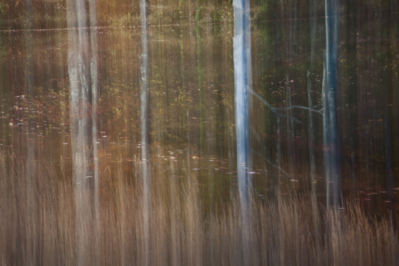 Flowing Fall Reflections<br /> (IMG_2050)