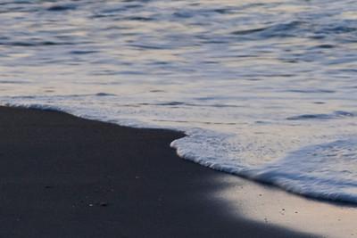 Surf Side (IMG_0375)
