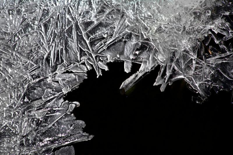 Ice harbor 1