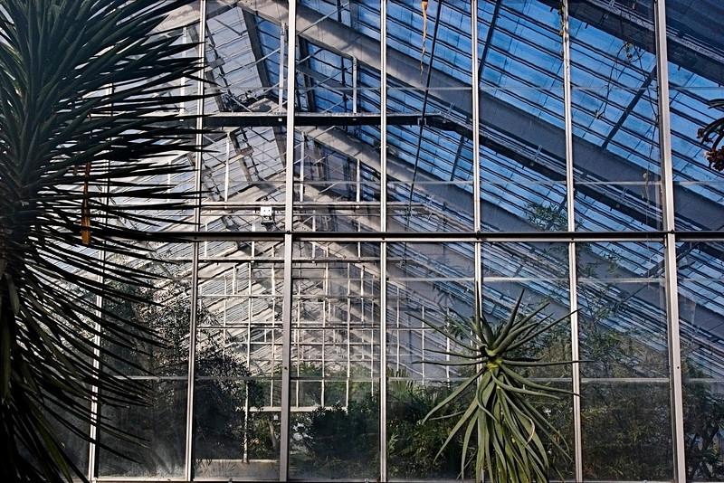Conservatory, Mattheai Botanical Gardens, Ann Arbor Michigan