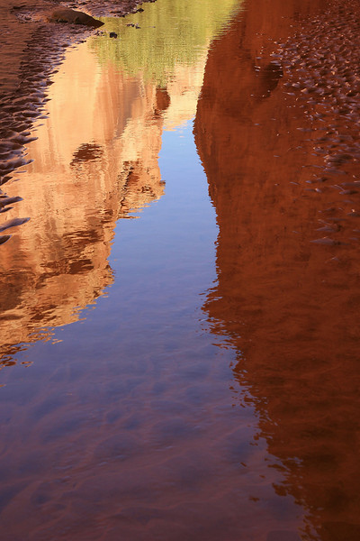 Cottonwood Reflections 3