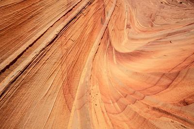 Paw Hole