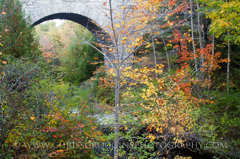 Duck Brook Bridge