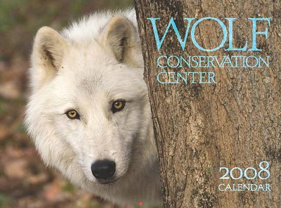 This photograph by Tom appeared on the COVER of 2008 Wolf Conservation Center (WCC) calendar. You can purchase the 2008 calendar from their website. http://www.nywolf.org/