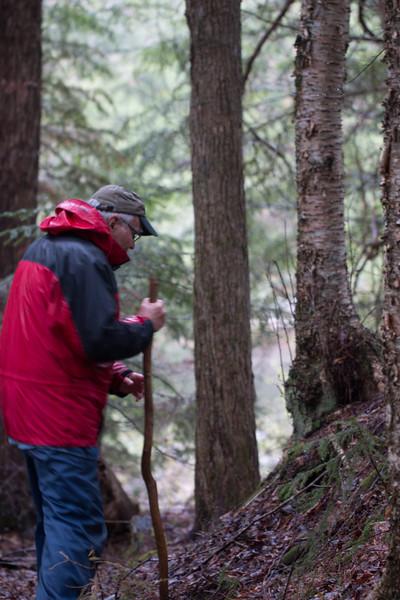 Peter O'Shea explaining pioneer species on glacial erratic