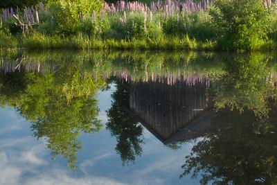 Pond at John Brown's farm